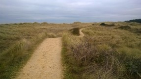 holme-dunes-nature-reserve
