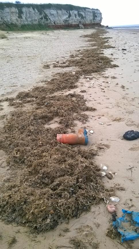 Wellington boot and line of seaweed, Old Hunstanton