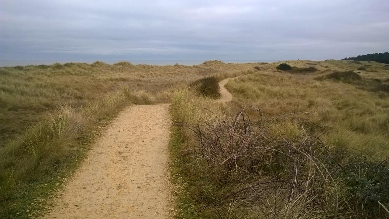 Holme Dunes Nature Reserve