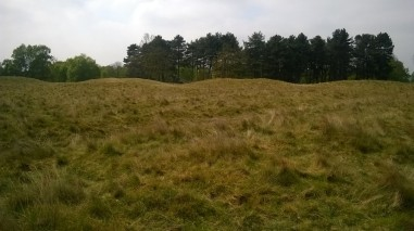 Sutton Hoo several burial mounds