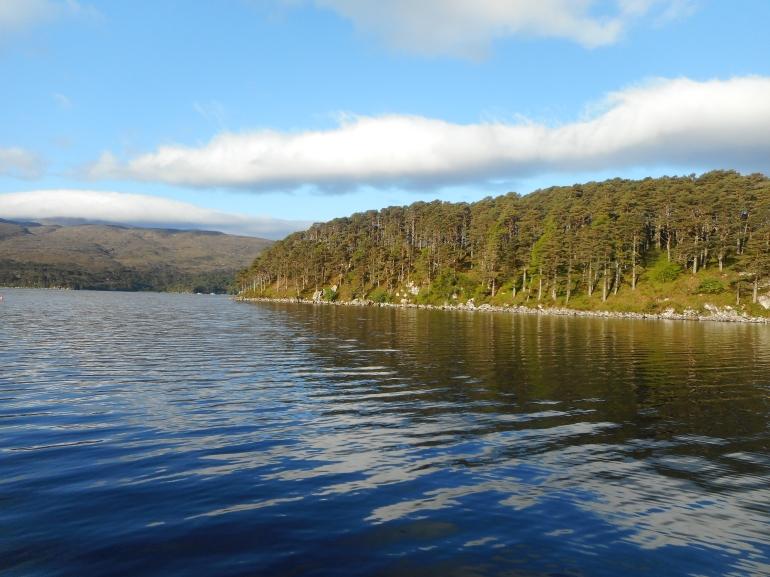 Island in Loch Torridon