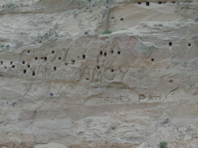 Birds' nests and graffiti on the cliffs, Kessingland