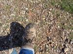 Slightly muddy boot
