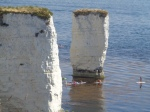 Old Harry Rocks and Paddleboarders